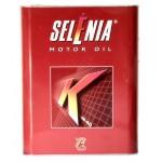 Синтетическое моторное масло Fiat SELENIA K (2)